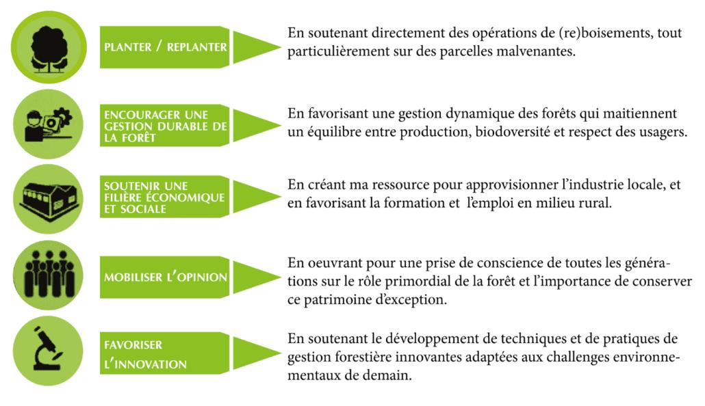 Actions eco friendly - WEI and GO - Plantons pour l'avenir